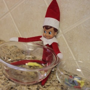 Henry the Elf {Day 21}