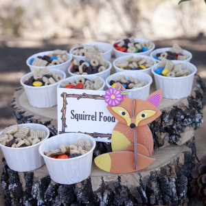 Forest Friends Woodland Theme Birthday Party