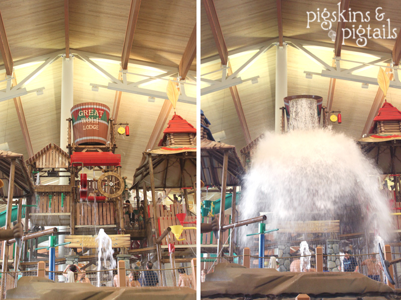 Things to do in Texas:  Great Wolf Lodge in Grapevine
