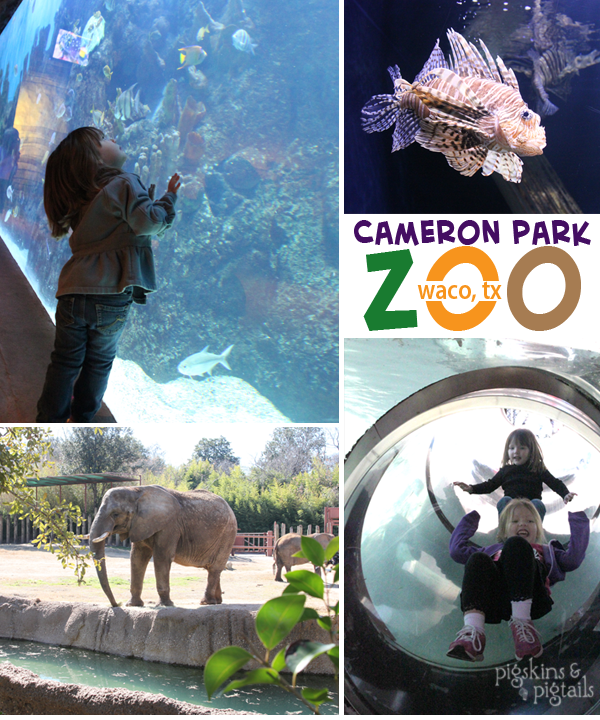 Things to do in Texas: Cameron Park Zoo