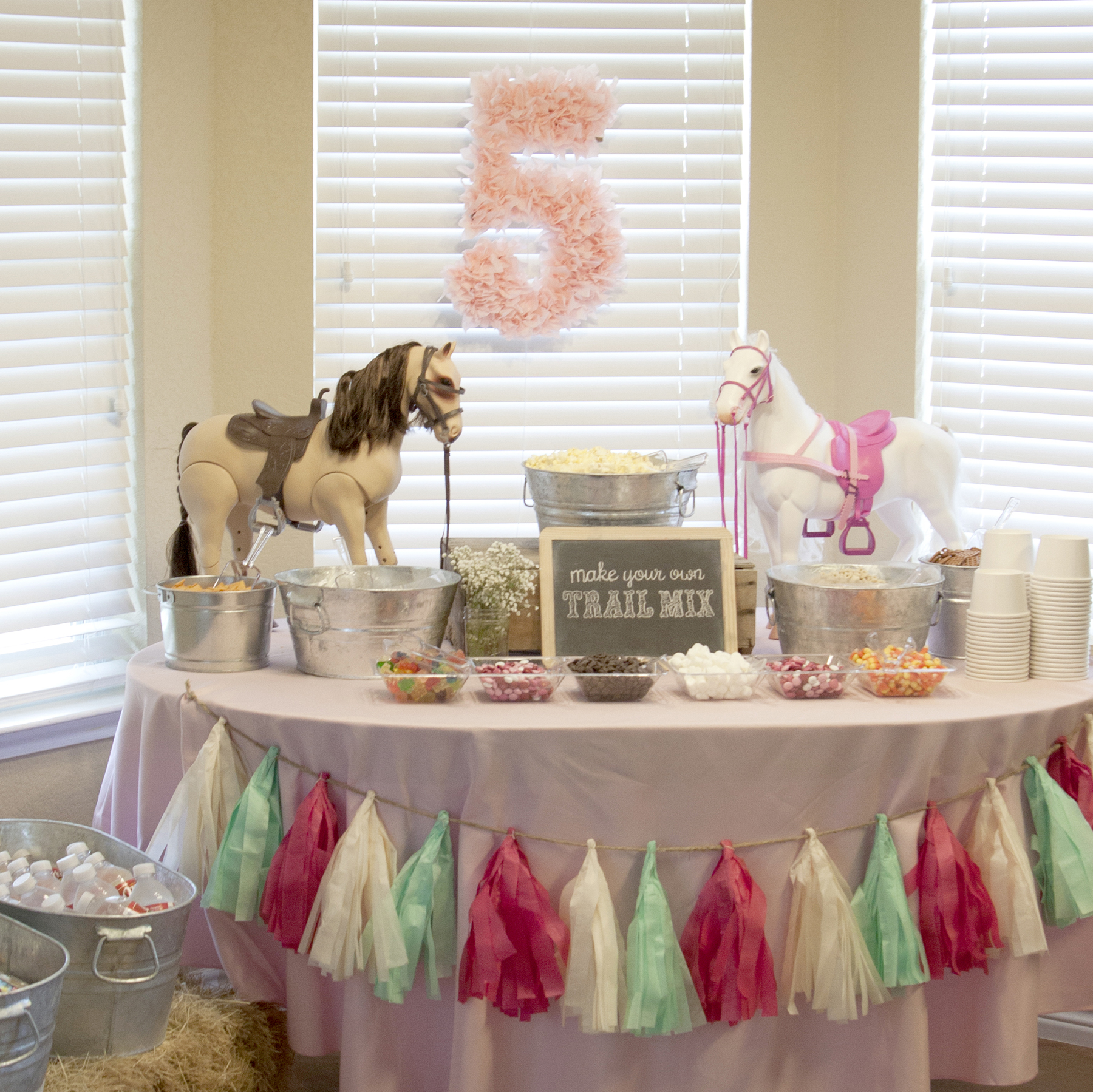 Pony 5th Birthday Party