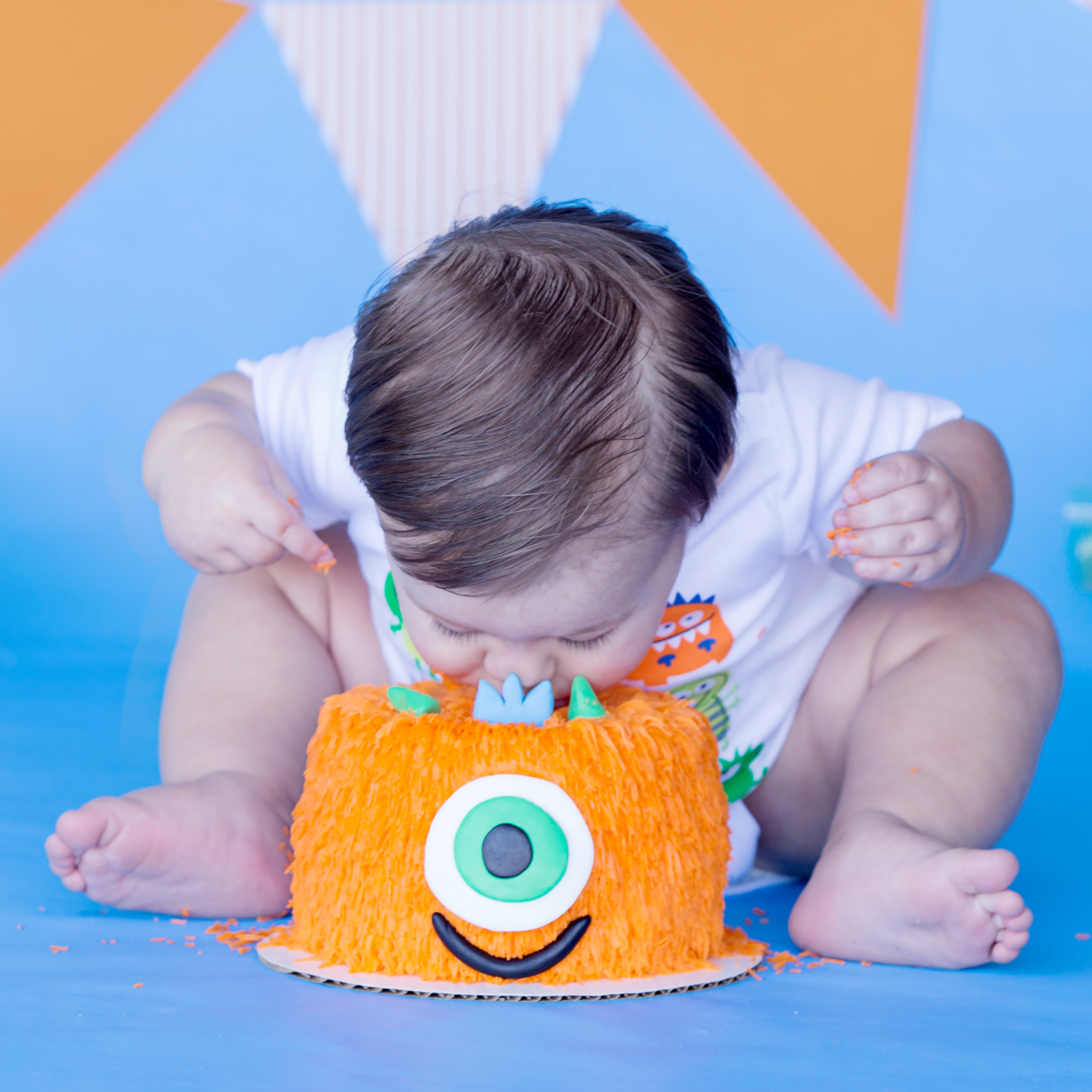 Monster Cake Smash | First Birthday Photo Session