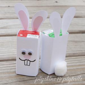 Easter Bunny Juice Wrapper DIY